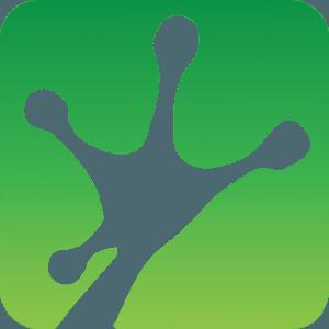 green_gradient_frogprint
